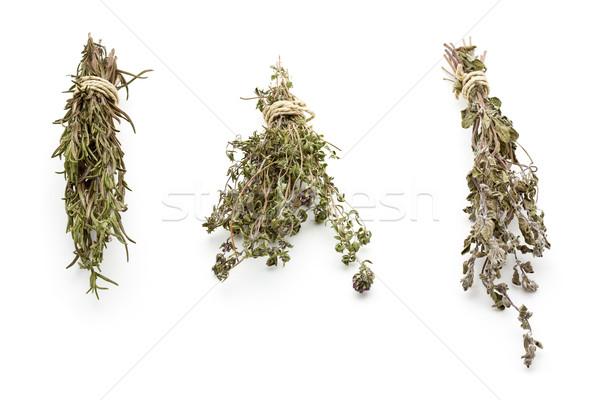 Kurutulmuş otlar biberiye bitki şerit sağlıklı Stok fotoğraf © ShawnHempel