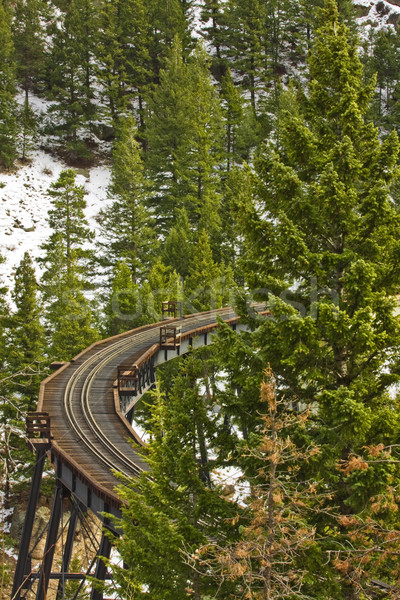 Railroad bridge Stock photo © ShawnHempel