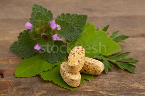 Szárított növénygyűjtemény vitamin kiegészítő tabletták gyógynövények fából készült Stock fotó © ShawnHempel