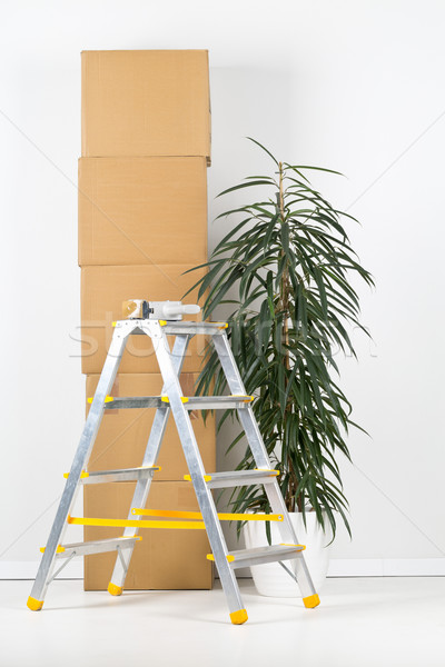 Moving carton boxes stack with ladder and plant Stock photo © ShawnHempel