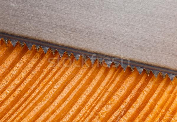 Fresche taglio legno mano visto Foto d'archivio © ShawnHempel