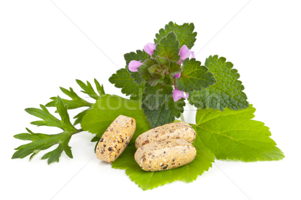 Vitamin ek hapları otlar beyaz Stok fotoğraf © ShawnHempel