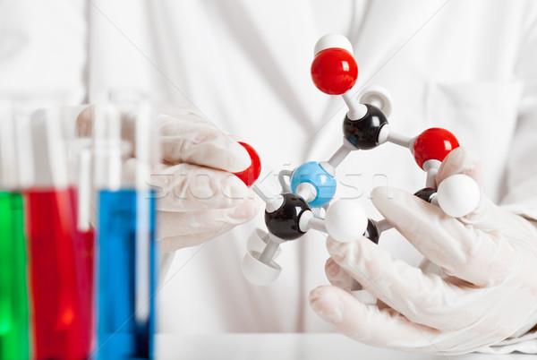 Photo stock: Chimiques · recherche · scientifique · étudier · modèle · test