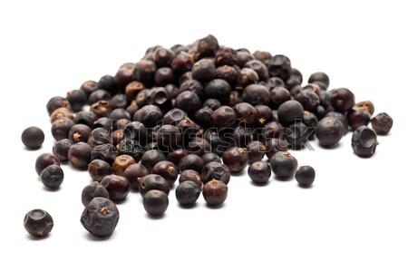 Juniper berries Stock photo © ShawnHempel