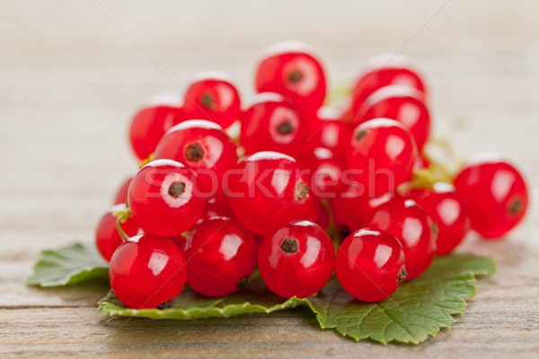 Redcurrants Stock photo © ShawnHempel
