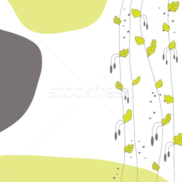 Tavasz levél zöld levél természet terv háttér Stock fotó © shekoru