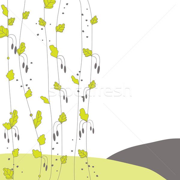 весны лист зеленый лист природы дизайна фон Сток-фото © shekoru