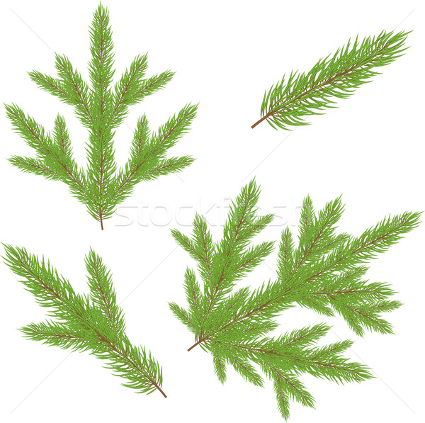 Foto stock: Natal · verde · árvore · natureza · fundo · arte