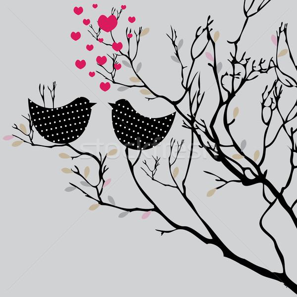Aves árvore primavera amor abstrato Foto stock © shekoru