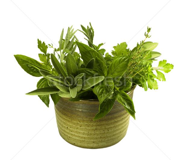 свежие травы Керамика органический кухне банка Сток-фото © sherjaca