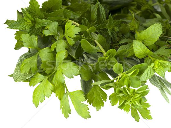 Taze organik otlar göstermek mutfak gıda Stok fotoğraf © sherjaca