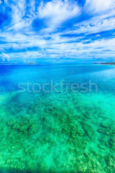 Mare smeraldo verde acqua texture estate Foto d'archivio © shihina