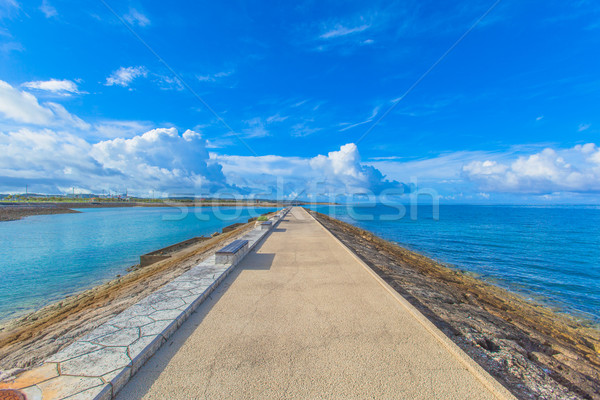 Ocean view from the reakwater with benches Stock photo © shihina