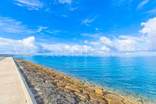 Breakwater road on the sea Stock photo © shihina