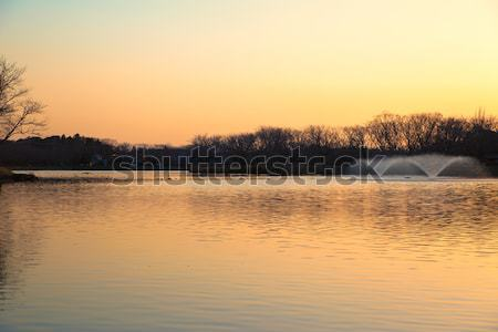 Sunset of the pond with fountains Stock photo © shihina