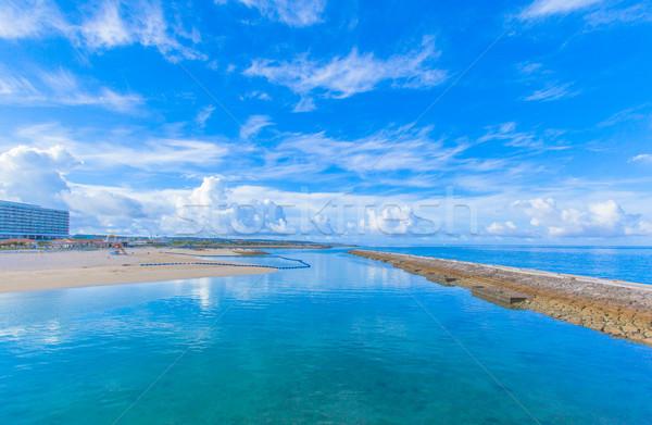 熱帯ビーチ 青空 風景 背景 夏 青 ストックフォト © shihina