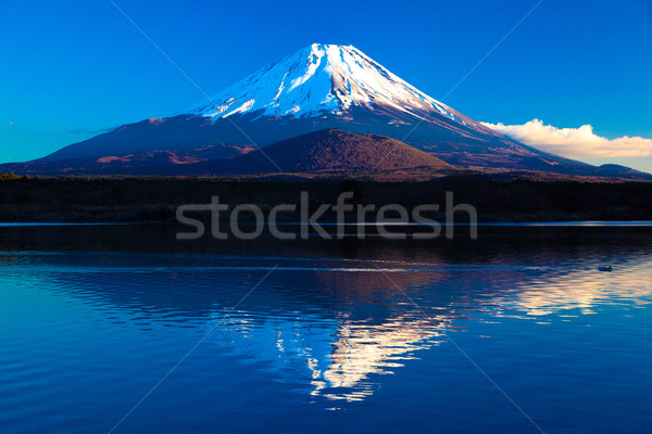 World Heritage Mount Fuji and Lake Shoji Stock photo © shihina