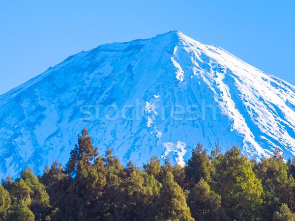 Woods and beautiful snowcapped Mount Fuji blue sky Stock photo © shihina