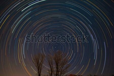 星 木 春 風景 スペース 1泊 ストックフォト © shihina