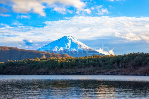 Lake Saiko, Mount Fuji  and bright clouds Stock photo © shihina