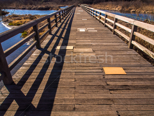 Wooden bridge in natural park with blue water  Stock photo © shihina