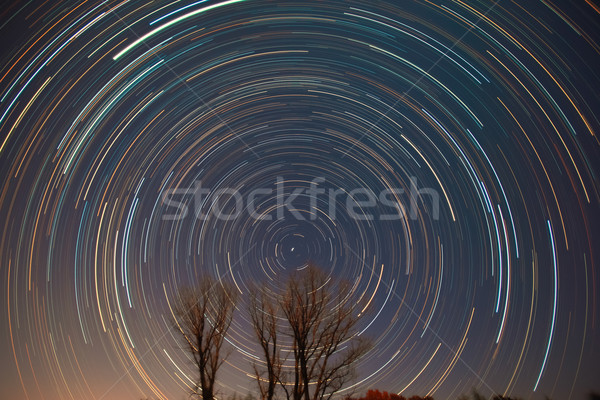 Polaris, star trails and shooting star over the trees  Stock photo © shihina