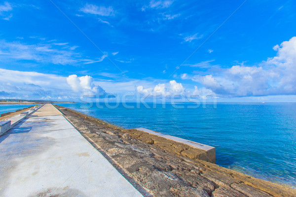 Ocean view from the breakwater load Stock photo © shihina