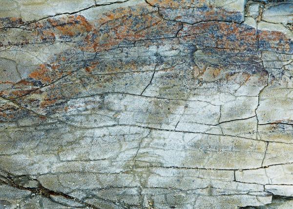 Kő textúra közelkép kép természet szín Stock fotó © shyshka