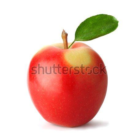 Fraîches pomme rouge feuille fichier élevé Photo stock © shyshka
