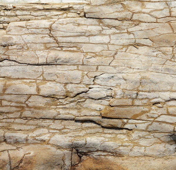 Kő textúra közelkép kép homokkő természet Stock fotó © shyshka