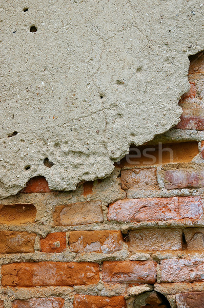 The texture of a wall- Stock photo © sibrikov