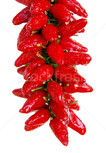 Sharp pepper Stock photo © sibrikov