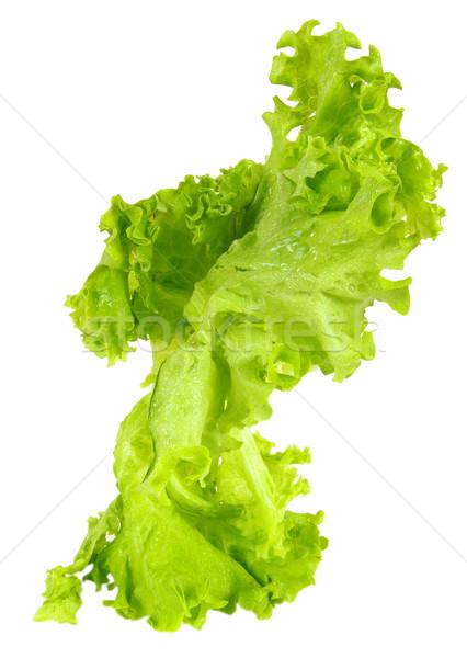 サラダ 農村 市場 食品 自然 ストックフォト © sibrikov
