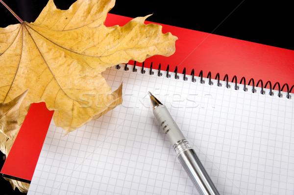 The writing subjects Stock photo © sibrikov