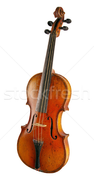 The violin  Stock photo © sibrikov
