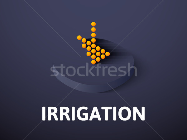 Irrigation isometric icon, isolated on color background Stock photo © sidmay