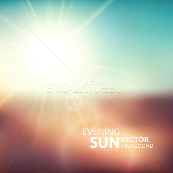 Verschwommen Abend Szene braun Bereich Sonne Stock foto © sidmay
