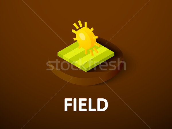 Field isometric icon, isolated on color background Stock photo © sidmay