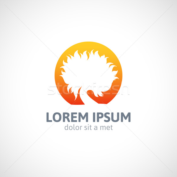 öko narancsfa logo sablon absztrakt ikon Stock fotó © sidmay