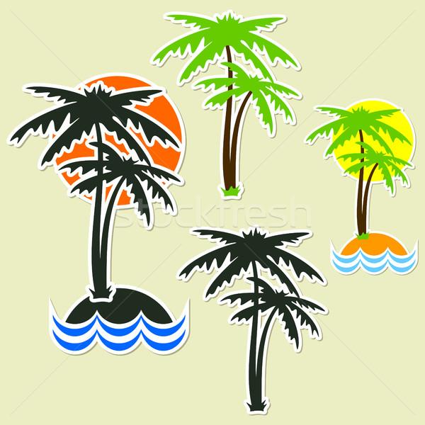 Különböző pálma pálmafák űrlap matricák szett Stock fotó © Silanti