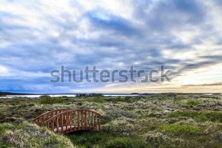 Wooden Bridge on an Icelandic Moor Stock photo © silkenphotography