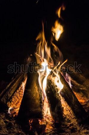Burning Camp Fire Stock photo © silkenphotography