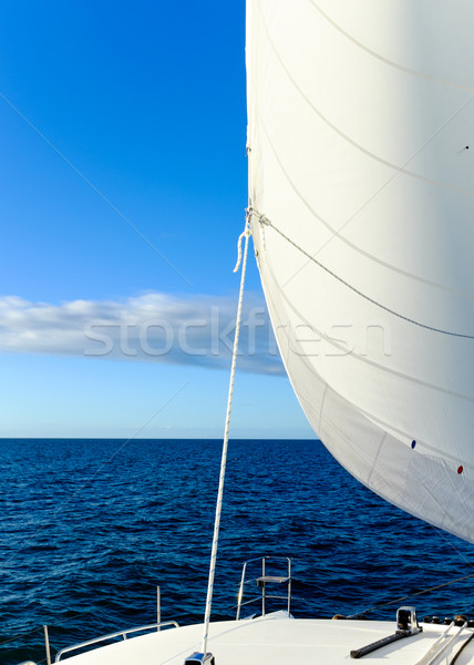Sail Full of Wind Stock photo © silkenphotography