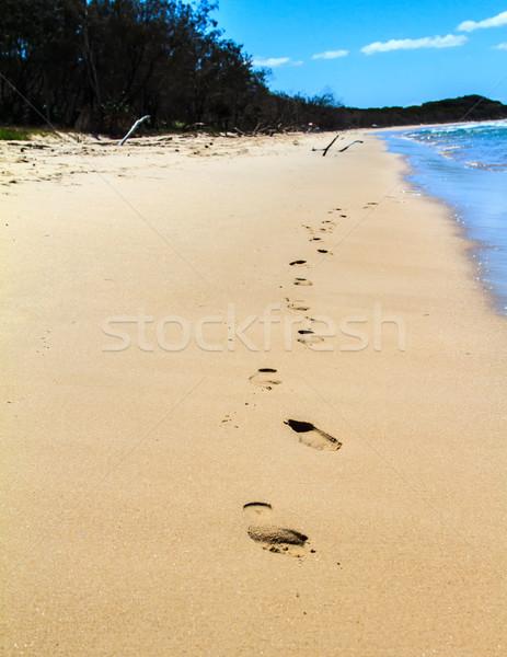 Ayak izleri plaj bir hat yürüyüş dışarı Stok fotoğraf © silkenphotography