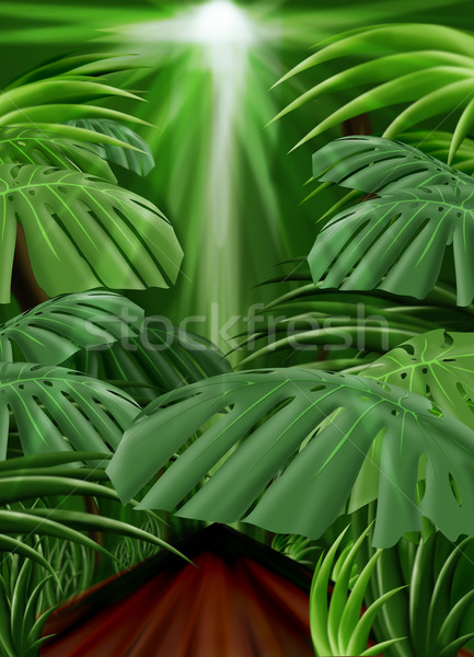 Jungle Background (Front leaf path included) Stock photo © simas2