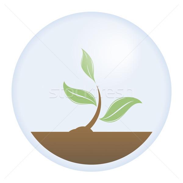 Vida protección vector protegido jóvenes árbol Foto stock © simas2
