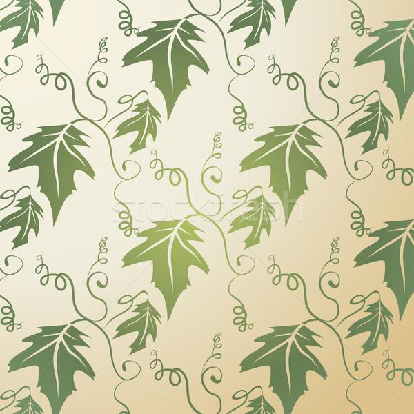 Stock fotó: Levél · minta · illusztráció · zöld · klasszikus · természet