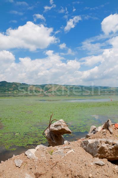 Duna folyó folyópart keret Szerbia Romania Stock fotó © simazoran