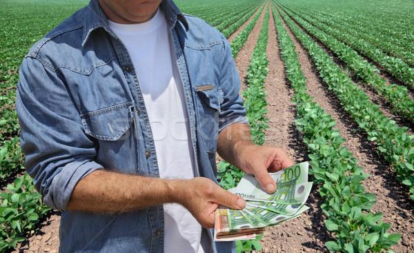 Agrícola jeans dinheiro campo euro Foto stock © simazoran