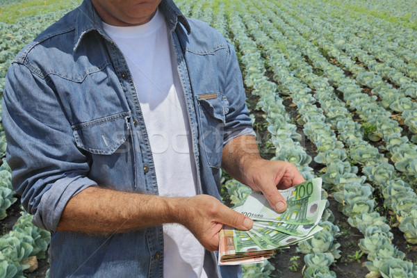 Agricultural concept, farmer, money and field Stock photo © simazoran